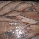 Sole fish big scale